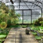 Les trucs à faire pour choisir sa serre de jardin