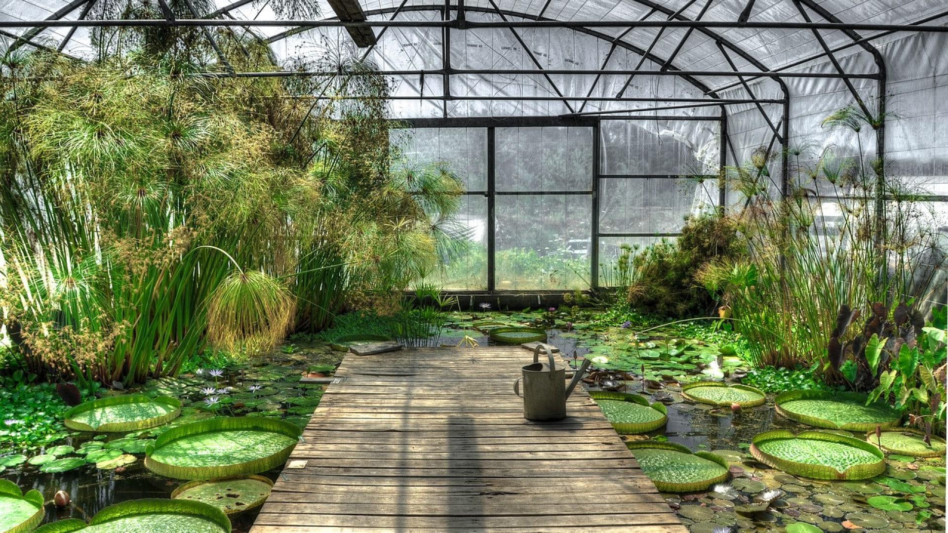 Les trucs à faire pour choisir sa serre de jardin - Les ...
