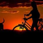 Les trucs à faire pour découvrir le vélo électrique pliable