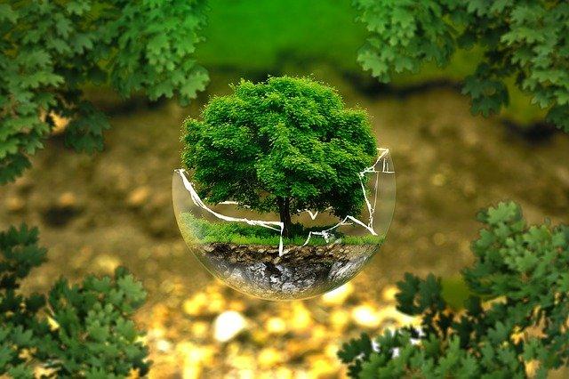 carrelage ecologique